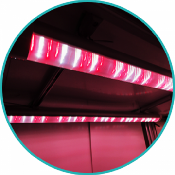 EGLP-45C-RWFR Red White Far-red Integrated Tube LED Growth Light for Indoor cultivation G3.5(3.5 generation)