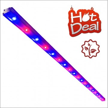 HEGL Series RED-BLUE LED Growth Light High Efficient G5(5th generation)