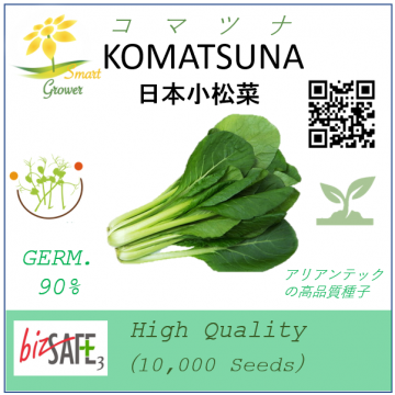 Japanese High Quality Seeds: KOMATSUNA