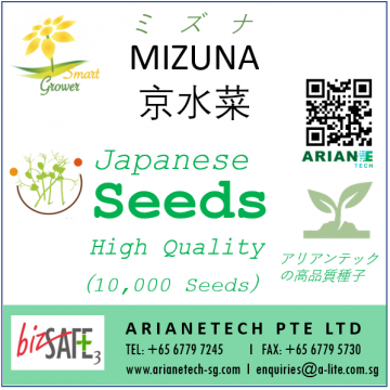 HIGH QUALITY SEEDS