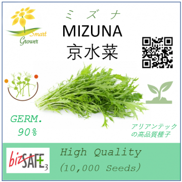 Japanese High Quality Seeds: MIZUNA