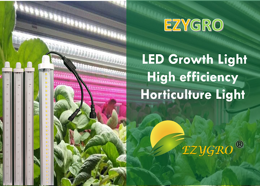 EZYGRO Series Grow Light, Artificial lighting in agriculture