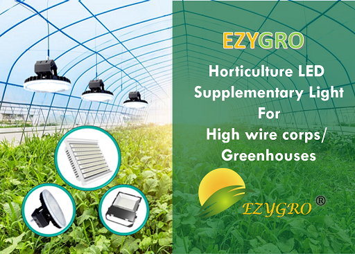EZYGRO Horticulture Supplementary Light, Growth Light, Artificial lighting in agriculture