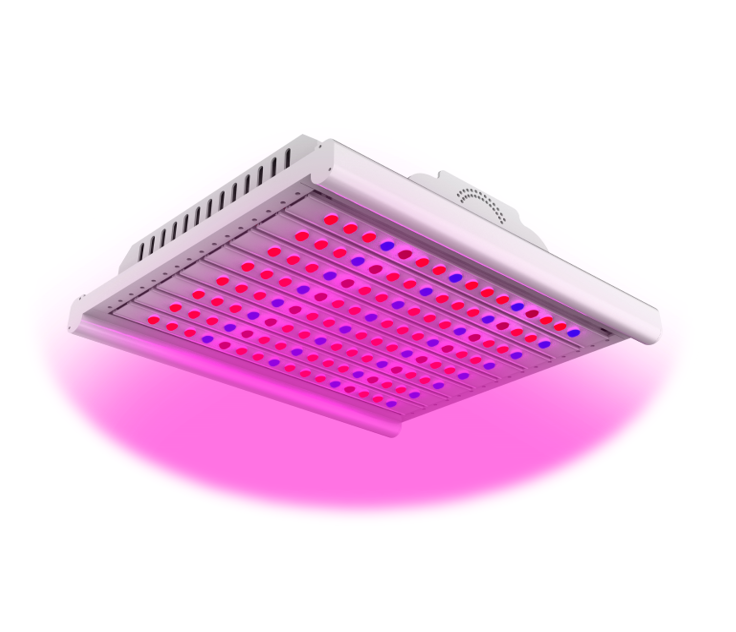 https://www.arianetech-sg.com/Artificial-lighting-in-agriculture-EZYGRO-series-Growth-Light-grow-light-plant-light-led-sunlight-full-spectrum/ezygro-led-horticulture-supplementary-lighting-Growth-Light-Artificial-lighting-full-spectrum-grow-light/EZYGRO%20LED%20HIGH%20POWER%20LIGHT-AGRI-SUPPLEMENTARY%20LIGHTING%20SERIES%20200W%20IP65