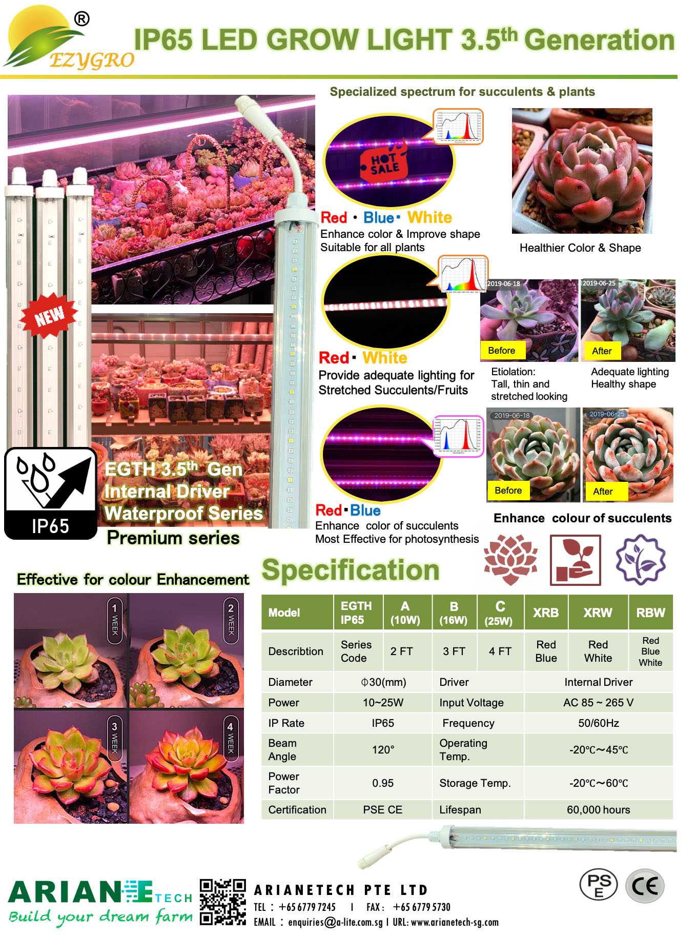 EZYGRO Succulent supplementary grow light 3