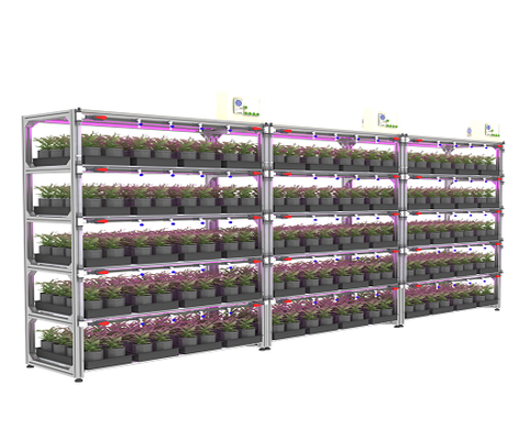 https://www.arianetech-sg.com/City-farm-Indoor-farm-urban-farm-Vertical-farm-Plant-factory-SMART-AGRO-High-Tech-Grower-Unit